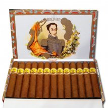 Bolivar Coronas Junior 25er