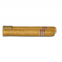 Dominican Estates Corona Glastube 6er